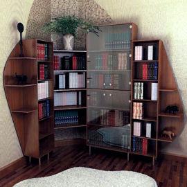 Шкафы-купе в библиотеку. шкафы, мебель в библиотеку и кабине.